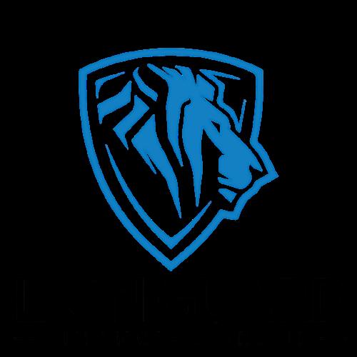 Logo Lion Guard Financial